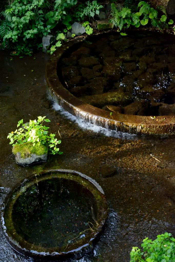 柿田川湧水の沸き間
